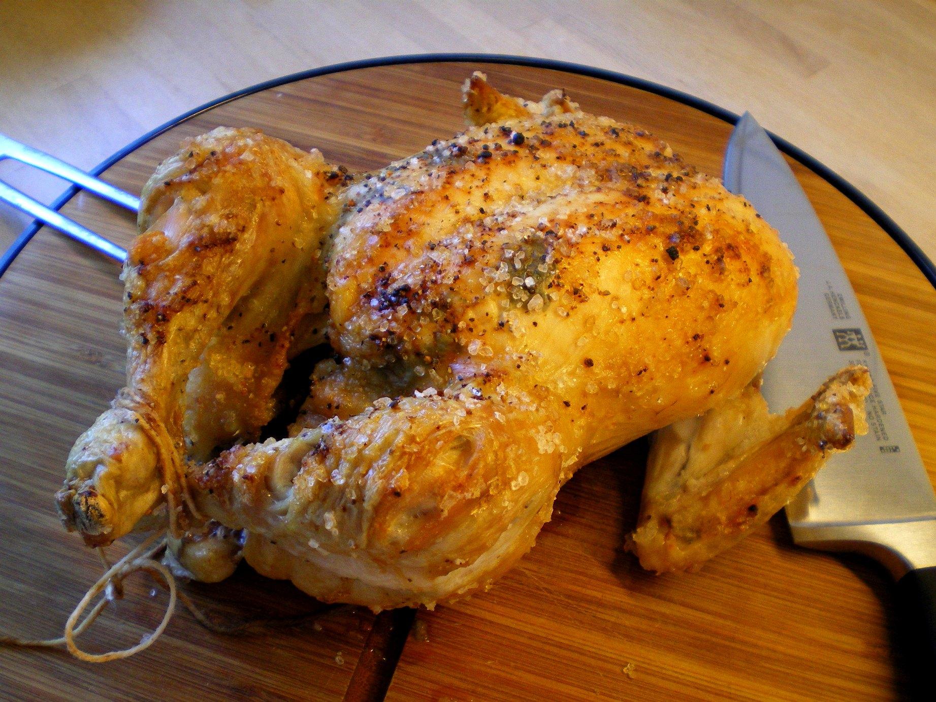stegning af hel kylling
