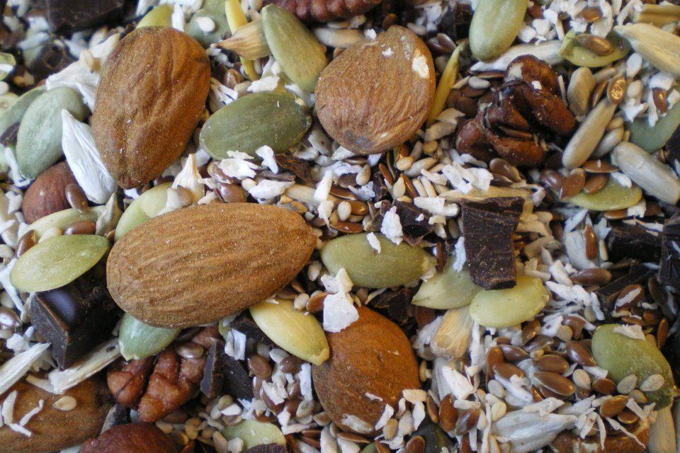 Stenaldermuffins med twist af kokos og chokolade