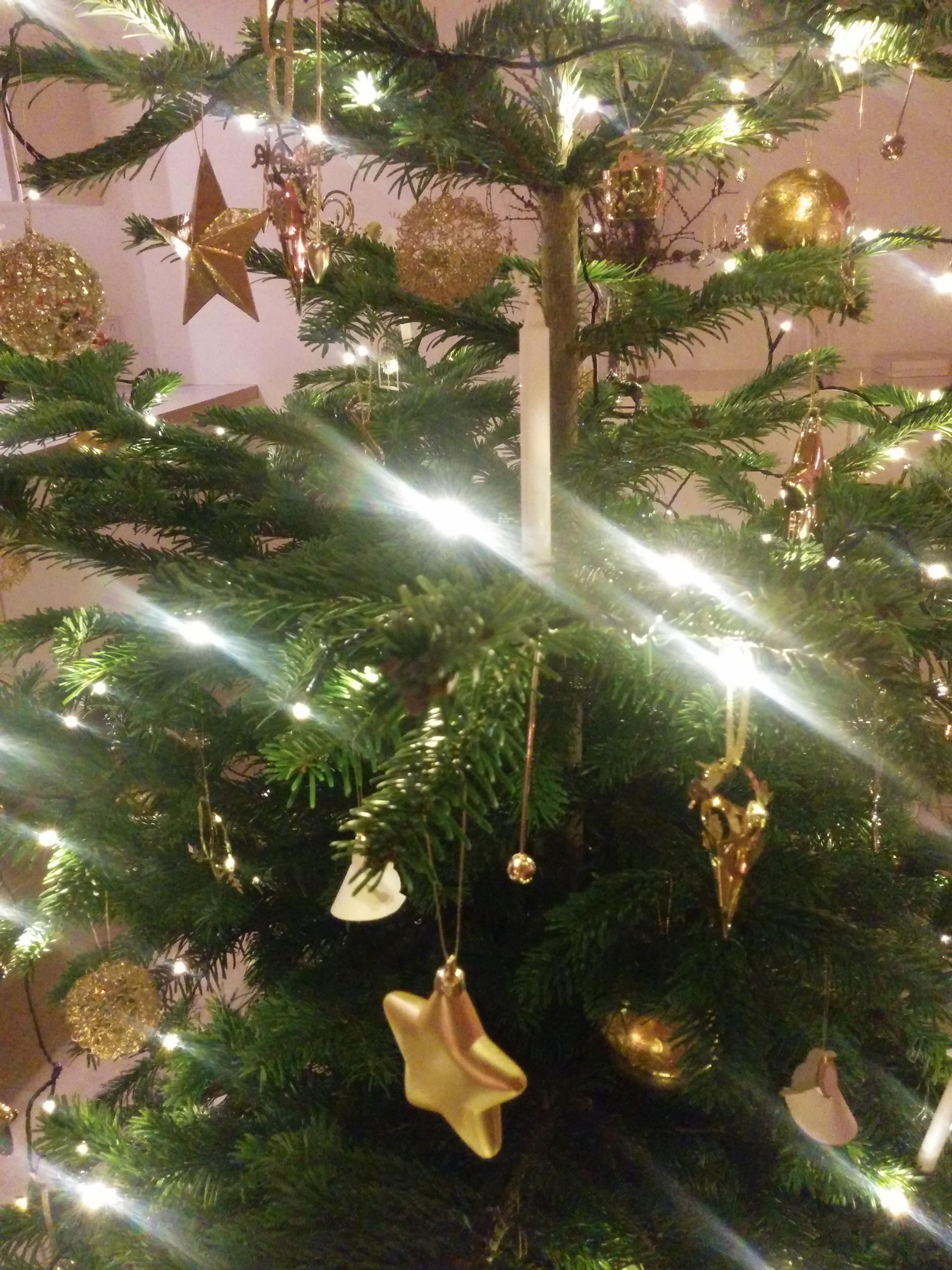 Juletræ_om jul og sygdom