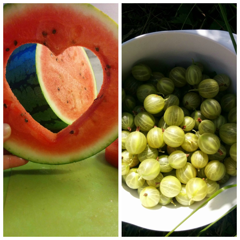Vandmelon og stikkelsbær