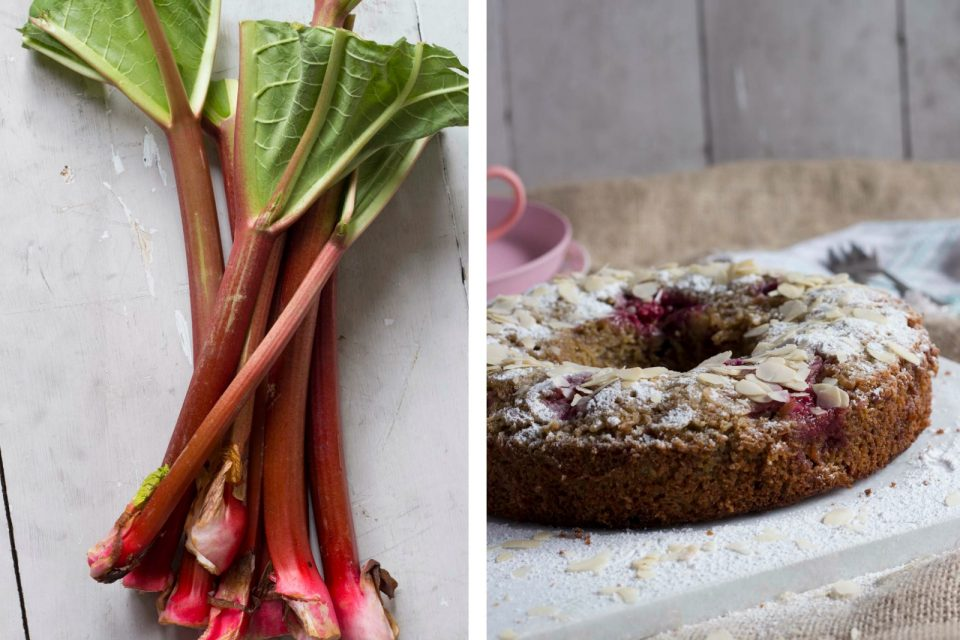 Rabarberkage med hindbær, hvid chokolade og marcipan